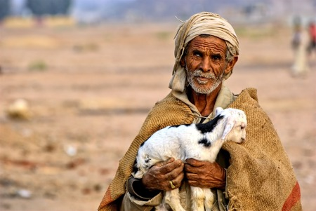 egypt shepherd with lamb